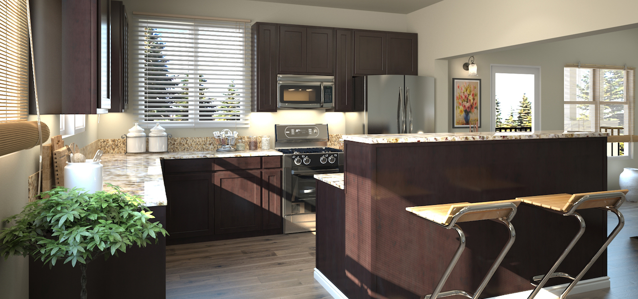 Casoleil Kitchen Rendering