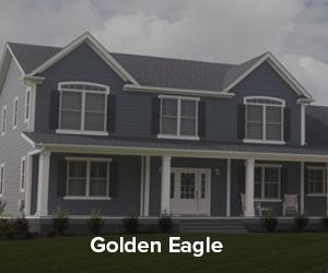 GoldenEagle.jpg